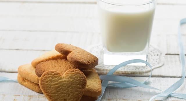 Colazione fatta in casa? Provate a fare questi buonissimi biscotti al latte!