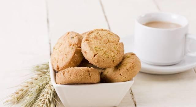 Buonissimi e perfetti per la colazione: sono i biscotti con latte condensato