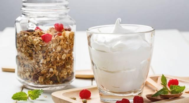 Frozen yogurt fatto in casa: la ricetta standard e quella con il Bimby