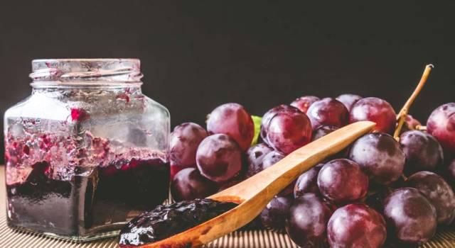 Preparare la marmellata di uva fragola velocemente è possibile: scopri la ricetta!
