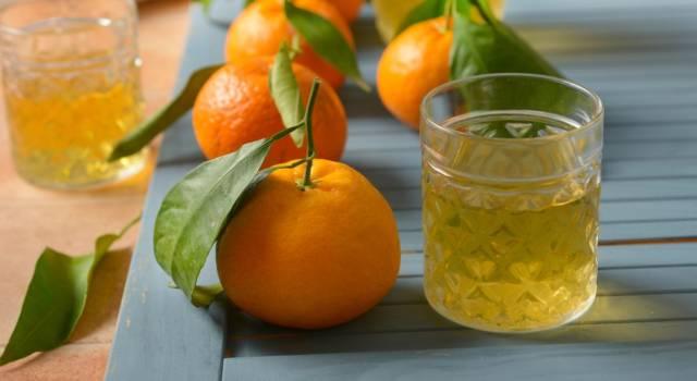 Liquore al mandarino: vi conquisterà al primo sorso!