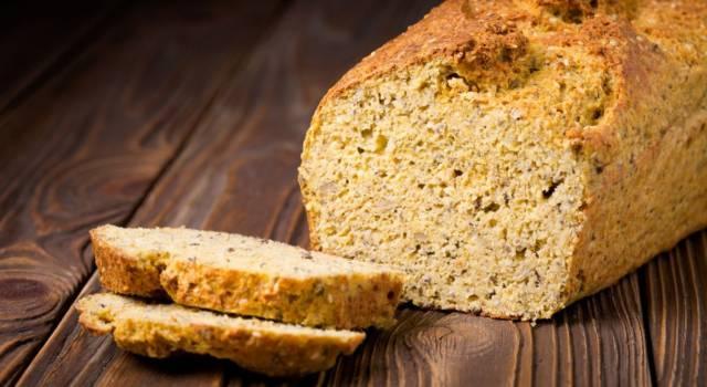 Plumcake con farina di mais: per preparare ricette sempre nuove!