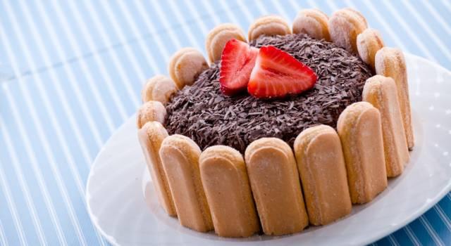 La charlotte al cioccolato è davvero strepitosa: ecco la ricetta