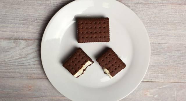 Quanto sono buoni i biscotti gelato? Prepariamoli insieme