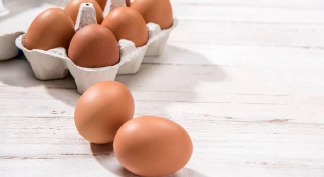 Si possono congelare le uova? Scopriamolo subito