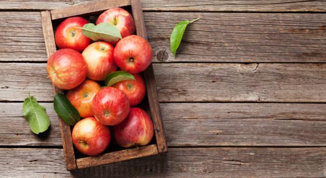 Conservare le mele e mantenerle sempre in buono stato è possibile: ecco come fare!