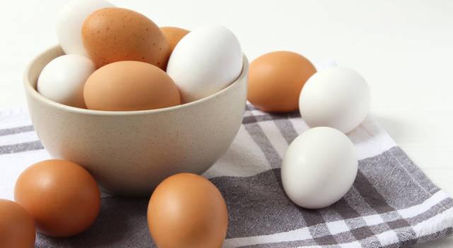 Dove e come conservare le uova? Da oggi non sbaglierete più!