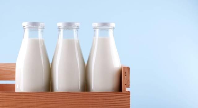 Come conservare il latte? Una domanda per nulla banale!