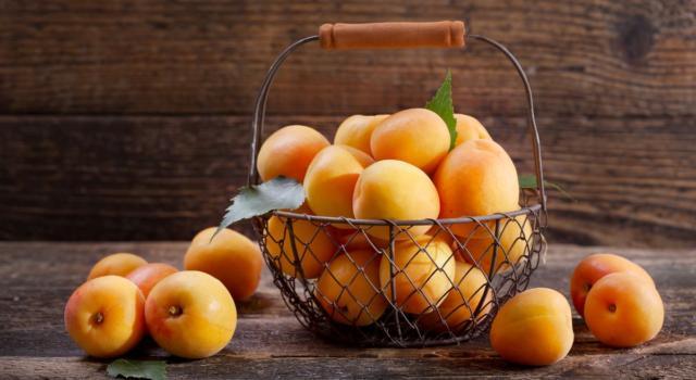 Le albicocche: un frutto dai mille benefici