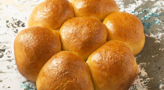 Pan di panna: la ricetta soffice come una nuvola