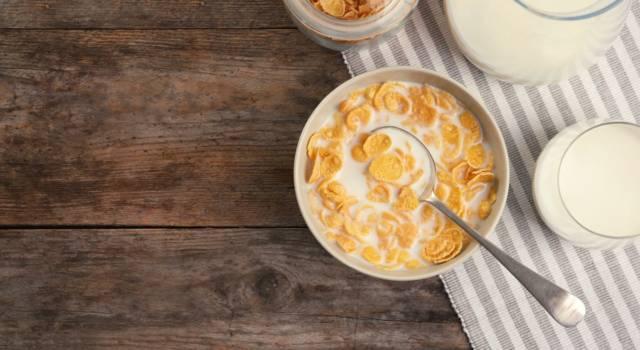 Storia dei corn flakes: ecco perché sono stati inventati