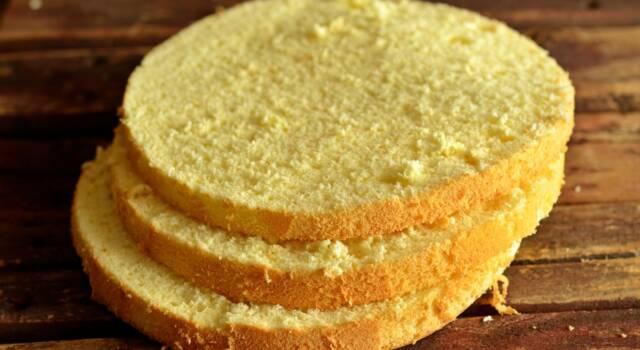 Pan di Spagna vegan: la base perfetta per dolci genuini e 100% naturali