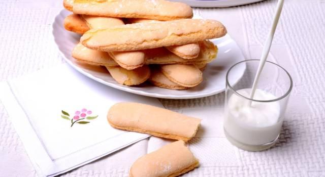Savoiardi sardi, i biscotti perfetti da inzuppare!