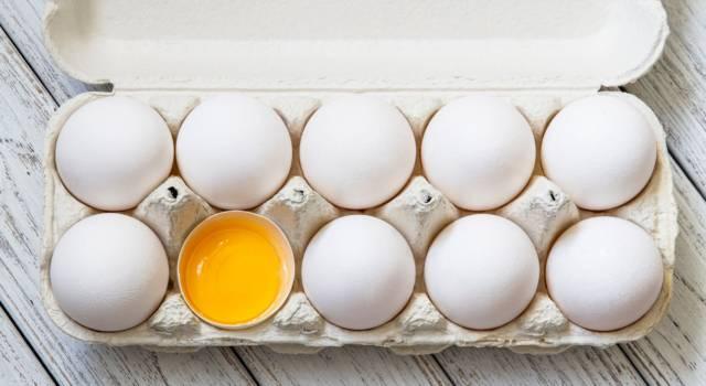Uova scadute: tutto quello che dovreste sapere (e nessuno vi ha mai detto)