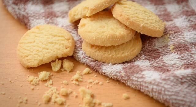 I biscotti con ammoniaca sono i dolcetti perfetti da inzuppare nel latte!